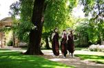 The Three Blighted Sisters enter the gardens |