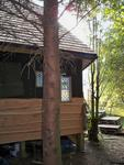 An enchanting house of wood in the woods |